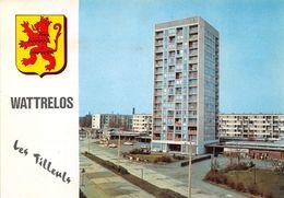 WATTRELOS - Le Centre Commercial Des Tilleuls - CPSM - Wattrelos