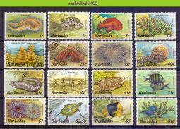 Mwe2532 FAUNA VISSEN SNAIL CORAL ANIMONE TURTLE CRAB FISH FISCHE POISSONS MARINE LIFE  BARBADOS 1985-1987 Gebr/used # - Marine Life