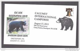 6.- 001 UNITED STATES OF AMERICA 2013. BLACK BEAR. URSUS - Bears