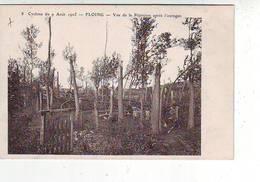 08. FLOING . CYCLONE DU 9 AOUT 1905 . VUE DE LA PEPINIERE APRES L'OURAGAN . ANIMEE . - Autres Communes