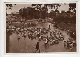 "Somalia Italiana - Carte Neuve. Vera Fotografia. Série L  N°8. "" Guado Nell'alto Giuba "" - Somalie"