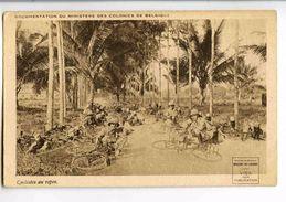 C 19963  -  Cyclistes Au Repos  --  Documentation Du Ministère Des Colonies De Belgique - Manovre