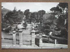 SAN SEVERINO MARCHE -GIARDINI PUBBLICI -1958 -    - --   BELLA - Autres Villes