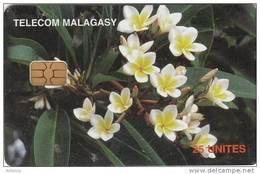 MADAGASCAR - Frangipanni Flowers, Used - Madagascar