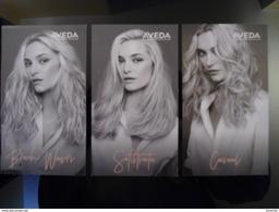AVEDA Hair Cosmetique Lot De 3 Cartes - Advertising
