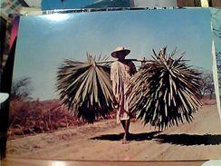 MADAGASCAR PORTATORE DI SISAL AGAVE  PER CORDE N1975 GI17592 - Madagascar