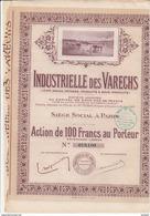 ACTION DE 100 FRANCS  - INDUSTRIELLE DES VARECHS  -ANNEE 1917 - - Agriculture