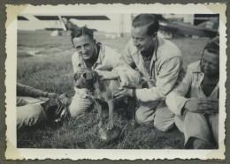 Aviation . Aviateurs Faisant Porter Des Lunettes à Un Chien . Snapshot. Août 1936 . - Aviación