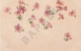 Fleurs (Recto-Verso) - Illustrateurs & Photographes