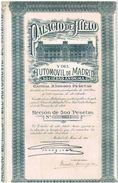 Action Ancienne - Palacio De Hielo Y Del Automovil De Madrid -Titre De 1921 - Automobile
