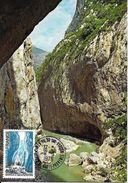 1996 - GORGES DU VERDON -04 ALPES-DE-HAUTE-PROVENCE - Cartas Máxima