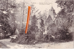 TIEGHEM - Vue Dans Le Bois - Gezicht In Het Bosch - Anzegem