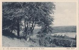 CARTES POSTALE LES PETITES DALLES - France