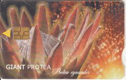 SOUTH AFRICA - Giant Protea, Telkom Telecard, Chip GEM3.1, Exp.date 01/02, Used - Afrique Du Sud