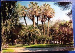 Salerno,Parco Comunale - Salerno