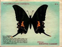 IMAGE 14/10,5 CM...PAPILLONS DIURNES EXOTIQUES..TELNOPALPUS    ..COLLECTION BISCOTTES CLEMENT - Animals