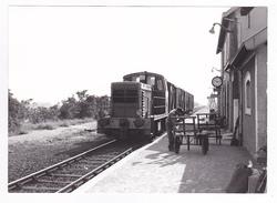 44 Batz Sur Mer Vers La Baule Le Croisic PHOTO Originale Train Marchandises Loco Y 7775 En Gare Le 28/08/1975 VOIR DOS - Trains