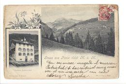 17916 - Gruss Aus Panix + Cachet Linéaire Panix - GR Grisons
