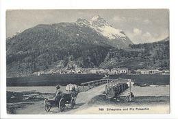 17921 - Silvaplana Und Piz Polaschin Attelage Boeuf - GR Grisons