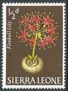 Sierra Leone. 1963 Flowers. ½d MH. SG 242 - Sierra Leone (1961-...)