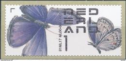 Nederland  Butterflies - Vlinders