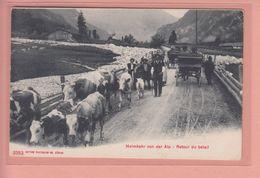OUDE POSTKAART ZWITSERLAND  - SCHWEIZ -    HEIMKEHR VON DER ALP - AGRICULTURE - GEIT - CHEVRE - BE Berne