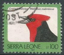Sierra Leone. 1992 Birds. 100l Used (1997 Imprint Date) SG 1902B - Sierra Leone (1961-...)