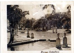 PARQUE CABALLERO - - BEAUTIFUL SELLOS PARAGUAY - VG 1950 FP - C215 - Paraguay