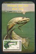 Etats Unis- Carte Maximum 1971 - Poissons - Maximumkarten (MC)