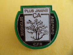 Pins Pin's EGF Plus Jamais CA à BRIGNOLES Var Incendie De Forêt Association ASEPARG  Signé Eurekom Agnes Moulin - Diving