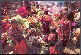 Guatemala - 1995 - Chichicastenango Mercado Del Domingo - Embajada Del Reino Natural Internacional - Neuve - 2281 - Guatemala