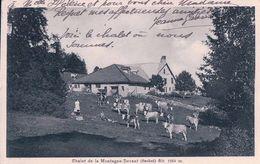 """Chalet De La Montagne-Devant, Suchet + Tampon """"CHALET DE LA MONTAGNE DEVANT LE SUCHET"""" (259) - VD Vaud"""