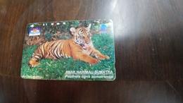Indonesia-(s318)-animals-sumatran Tigers-(75units)-used - Indonesia