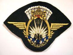 INSIGNE TISSUS PATCH DES DRAGONS PARACHUTISTE 13° RDP CHUTEURS OPS ETAT EXCELLENT - Esercito