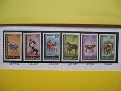 Timbre Non Dentelé   N° 256 à 261  Animaux Domestiques   1968 - Mauritanie (1960-...)