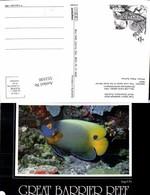 553100,Tiere Great Barrier Reef Australia Koralen Fisch Angel Fish - Ansichtskarten