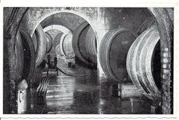 LUXEMBOURG - WELLENSTEIN - Caves Coopératives Des Vignerons De Wellenstein Sur Moselle (vue Partielle D'une Cave ..) - Postcards