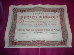 CHARBONNAGES DU BOULONNAIS (action 250 Francs) 1921 - Aandelen