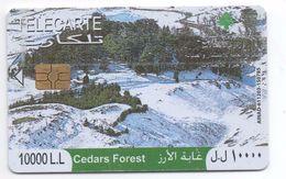 Cedars Forest 2009 Used Phonecard  Lebanon , Liban  Libanon - Libanon