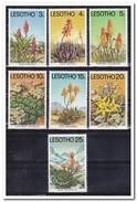 Lesotho 1977, Postfris MNH, Plants - Lesotho (1966-...)