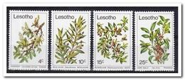 Lesotho 1979, Postfris MNH, Flowers, Plants - Lesotho (1966-...)