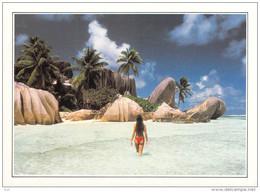 Afrique-SEYCHELLES (C)  The Royal Cove The Breakwater L'Anse Royale Que Rêver De Mieux ? *PRIX FIXE - Seychelles