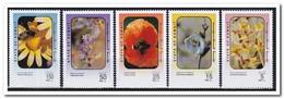 Koeweit 1995, Postfris MNH, Flowers, Bees - Koeweit