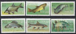 Germany (DDR) 1987  Susswasserfische (**) MNH  Mi.3095-3100 - [6] Democratic Republic
