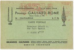 Carte Lettre Publicitaire CHATEAUROUX Pépinières GAUJARD ROME EMA Parc Floral ORLEANS Cultures Arbres Fruitiers RIEUX - 1961-....