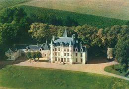 Chinon Saint-Germain-sur-Vienne Le Château Du Petit-Thouars Vin De Touraine Vignes Vignoble - Chinon