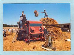 BOURBRIAC  GUINGAMP  ARGOAT N° 248  BATTAGE A L' ANCIENNE  AGRICULTURE MOISSONNEUSE   ANIMATION An: Vers 1960  Etat: TB - France