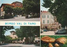 PARMA - BORGO VAL DI TARO - ALBERGO ROMA......H - Parma