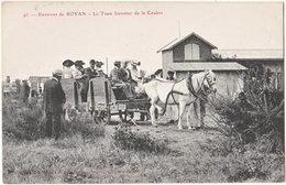 17. Environs De ROYAN. Le Tram Forestier De La Coubre. 95 - Royan