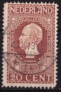 1913 Jubileumzegels 20 Cent Bruin NVPH 95 A - 1891-1948 (Wilhelmine)